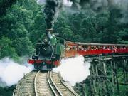 Puffing Billy in the Dandenong Ranges